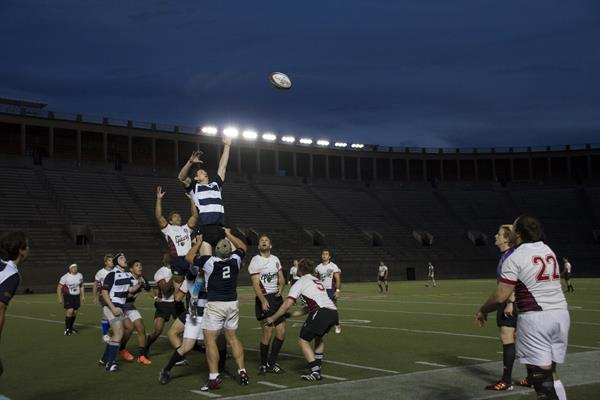 Yale at Harvard (Under the Lights), September 2013